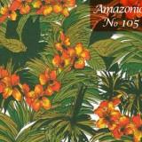 Amazonios_902x459